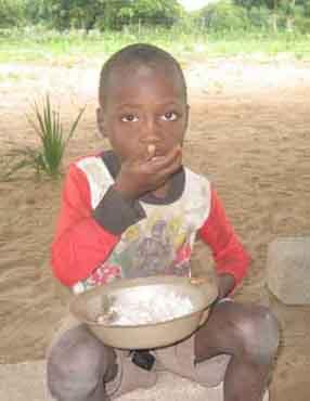 Proyecto de Mozambique